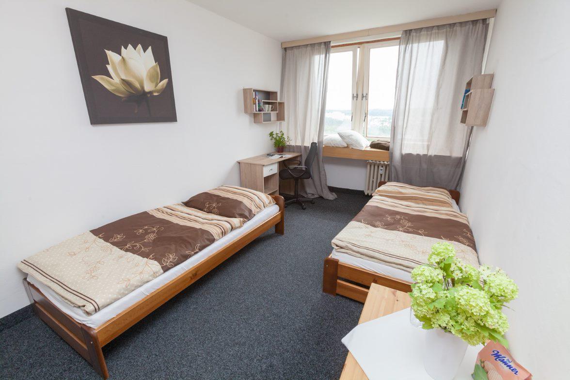 Dvojlůžkový pokoj - apartmán